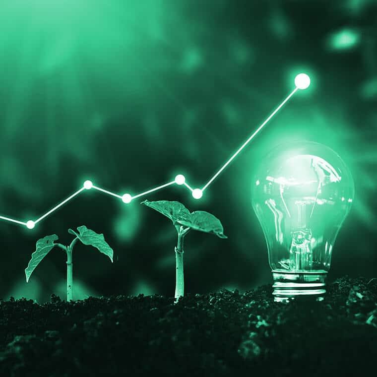 """Alt=""""Nachhaltigkeit in der Produktentwicklung, Pflanzen die wachsen und eine Glühbirne"""""""
